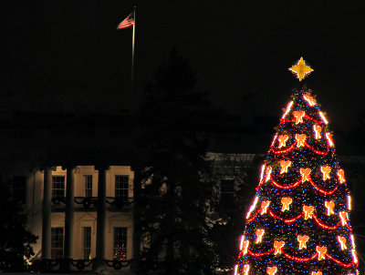 Eclipsed by the National Christmas Tree
