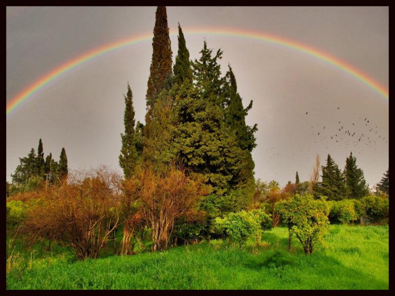 rainbow copyaa.jpg