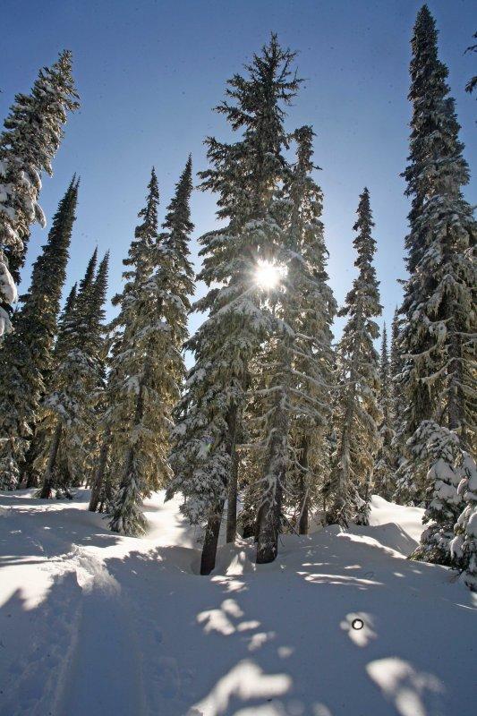 Warm Sunshine!!!