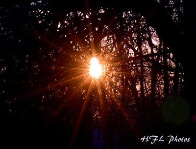 Day 1 Double Star Sunrise.JPG