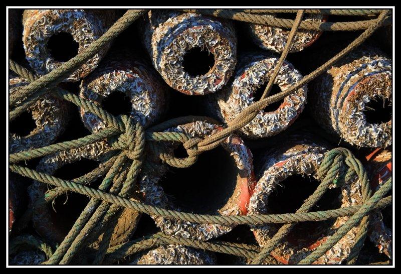 Artes de pesca   -   Fishing gear