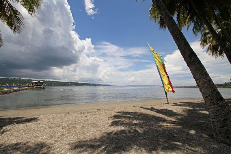 Davao Beachcombing.jpg