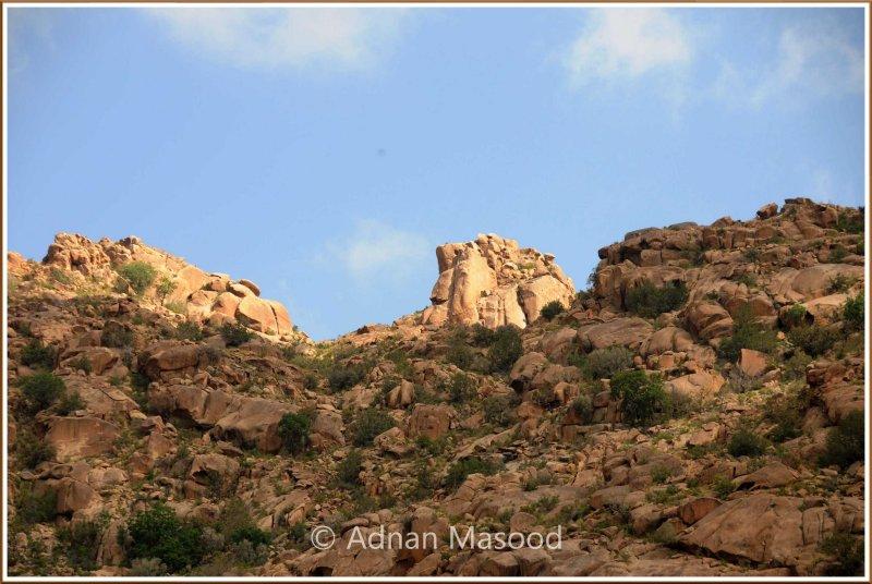 WadiShafa_110401.jpg