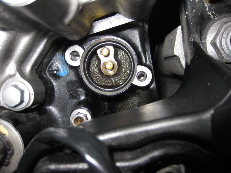 GearSensor 005a.JPG
