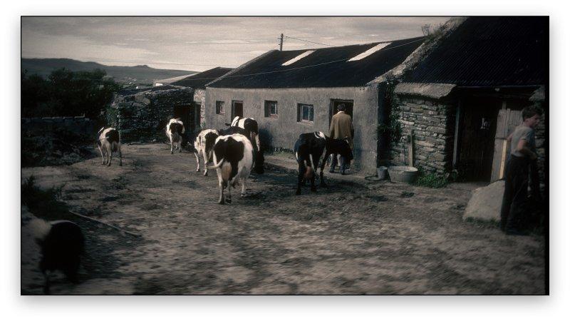Main Drag Dingle Ireland
