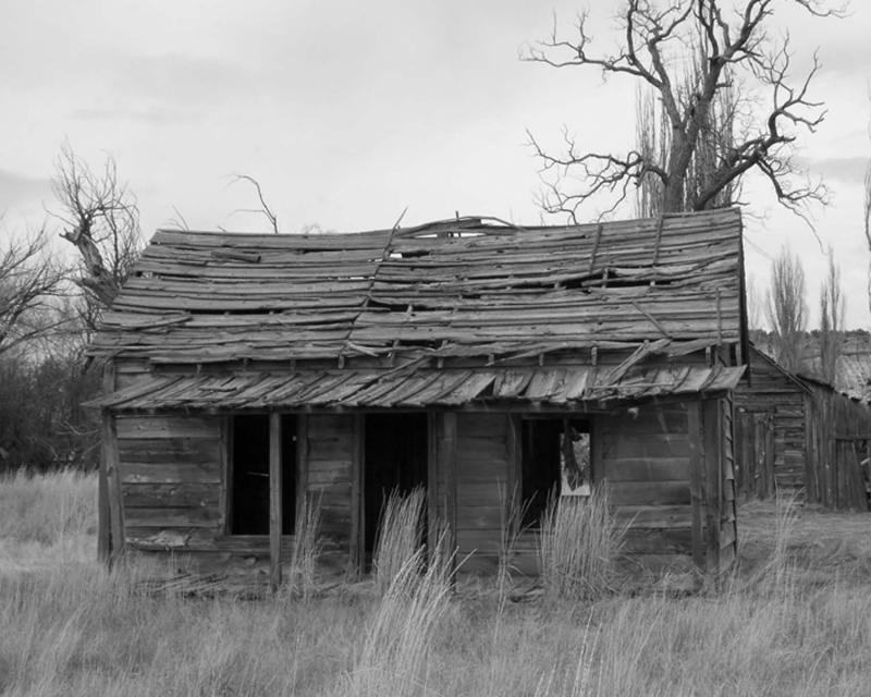 homestead from movie dalton girls.jpg