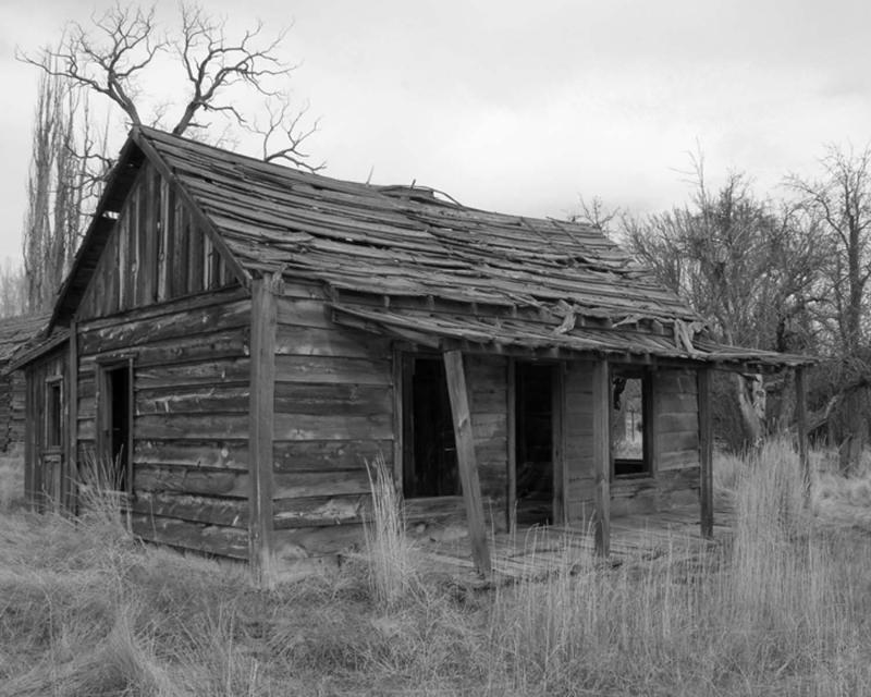 homestead from movie dalton girls 2.jpg