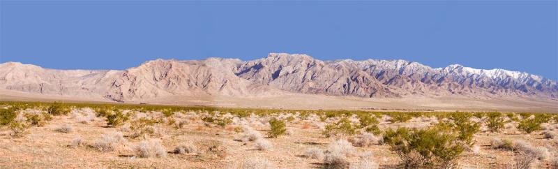 Littlefield Arizona.jpg