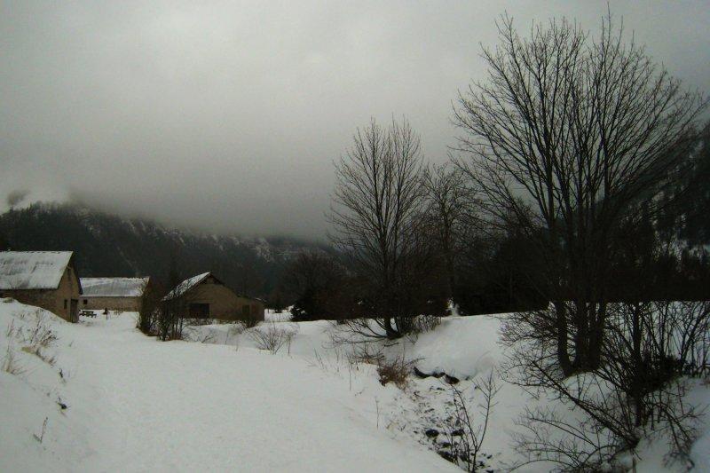 vallon de La Jarjatte, décembre 2007