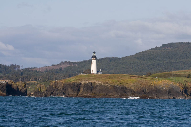 Yaquina Head