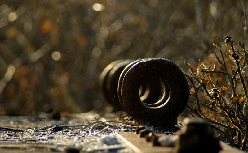 rust never sleeps 7