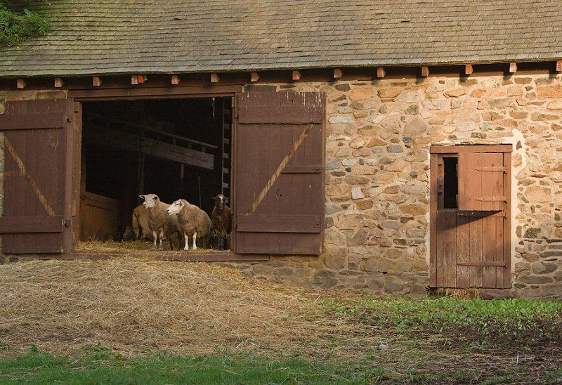 Neely Farm