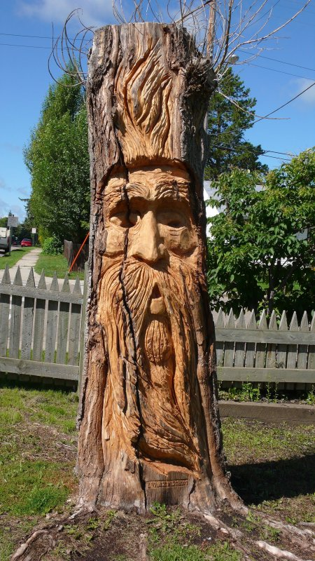 Carved stump.jpg