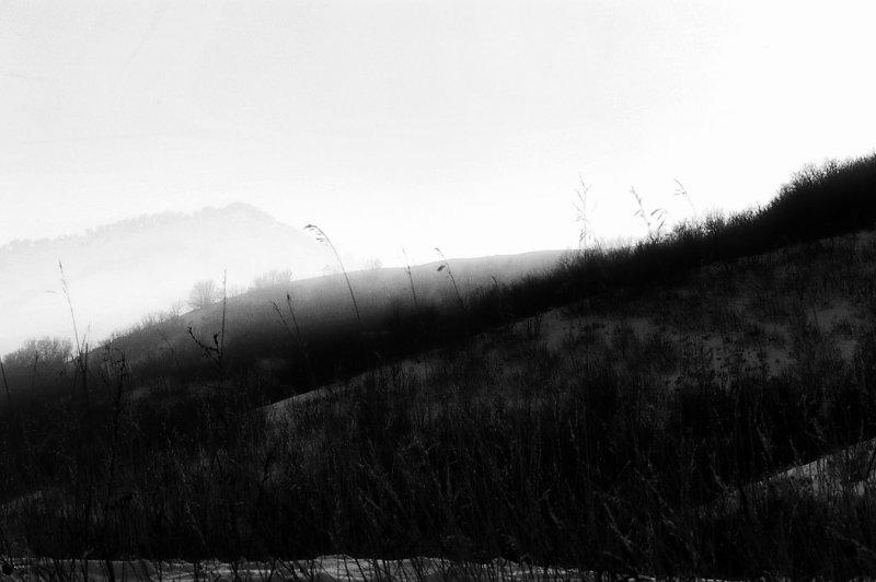 RR1-Landscape-Mantua 004.jpg