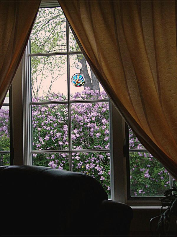 May 9th ~ Out The Window