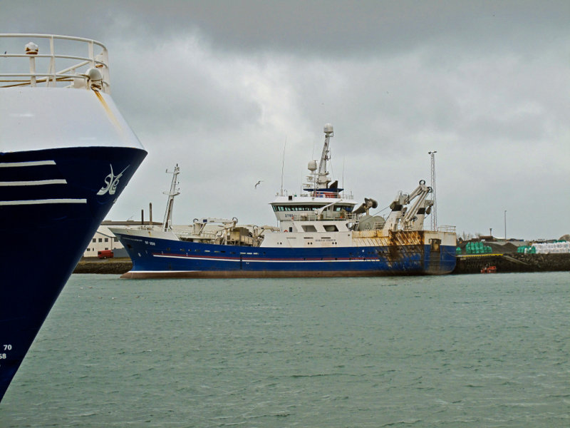 Djüpivogur harbour