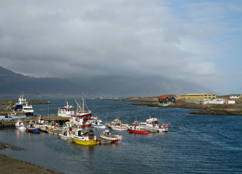 a sunny harbour in Iceland