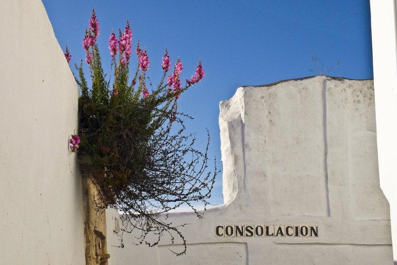 consolacion