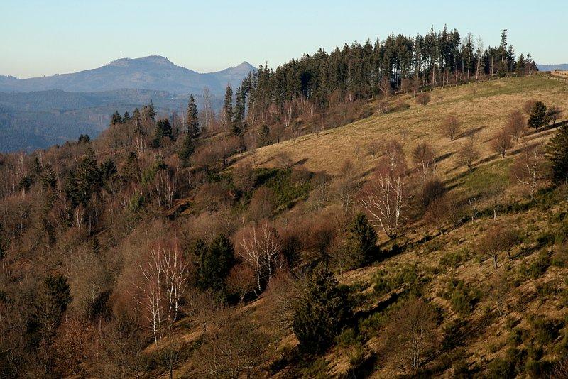 Vosges in winter.