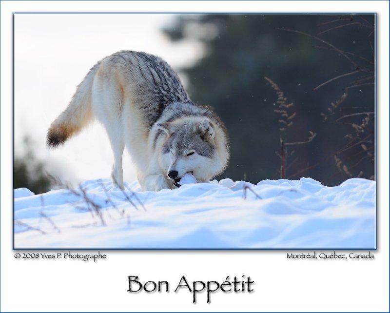 Bon Appétit ...