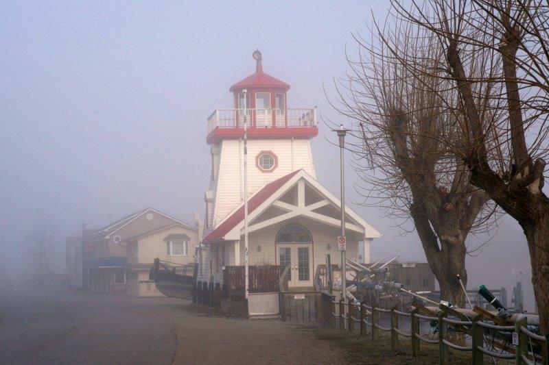 Fog, YC