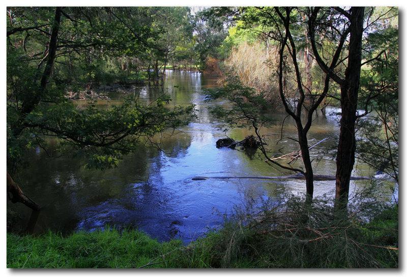Yarra river Landscape.