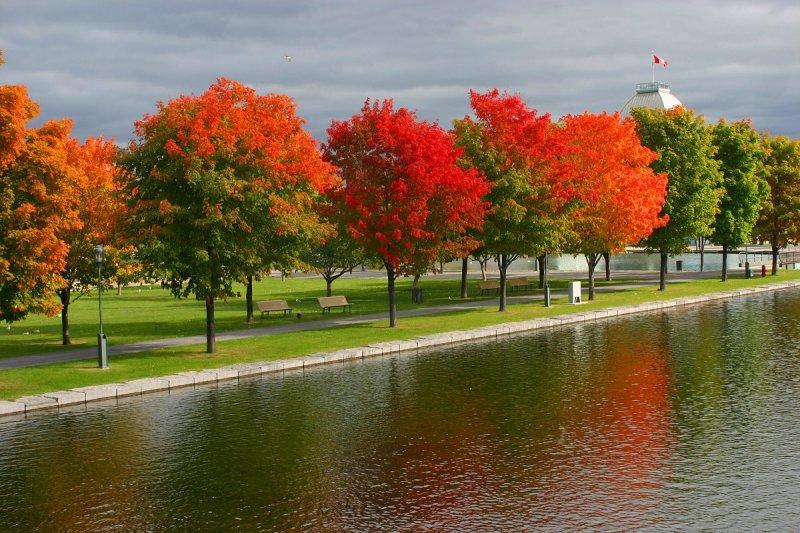 Couleurs dautomne / Autumn colors