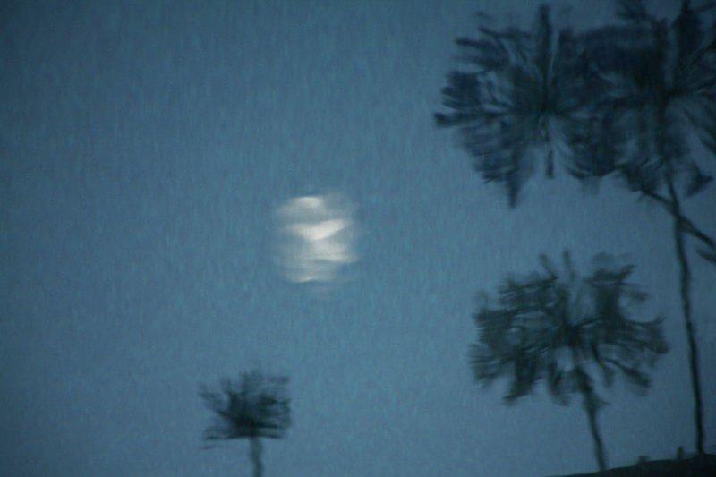 Moon Glow on Blue Water