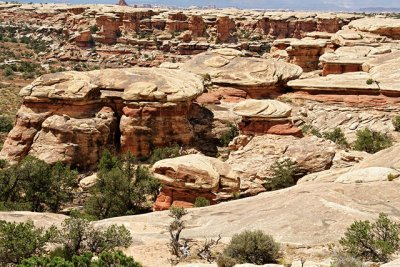 Pothole Point, In the The Needles section of Canyonlands