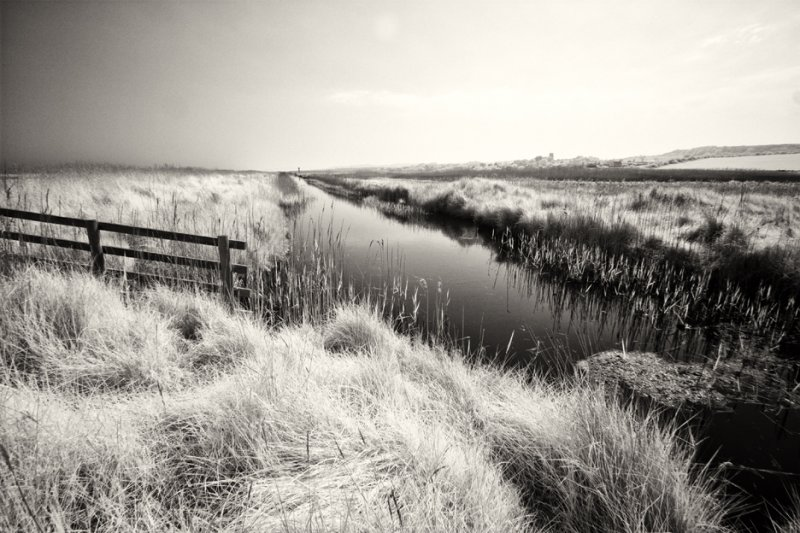 Salthouse Marsh