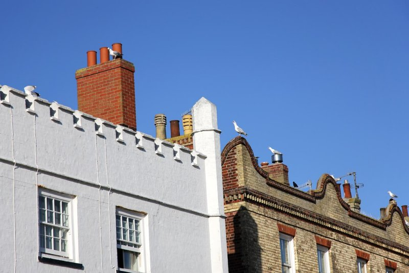 Gulls on the Roof