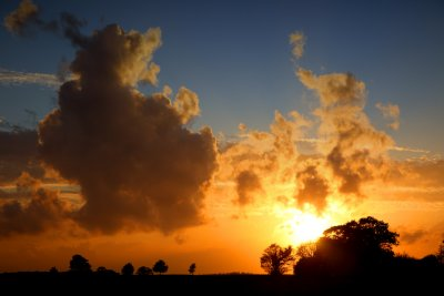 The Sky Really Came To Life