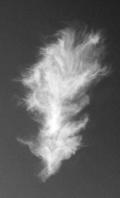 Feather Like Cloud