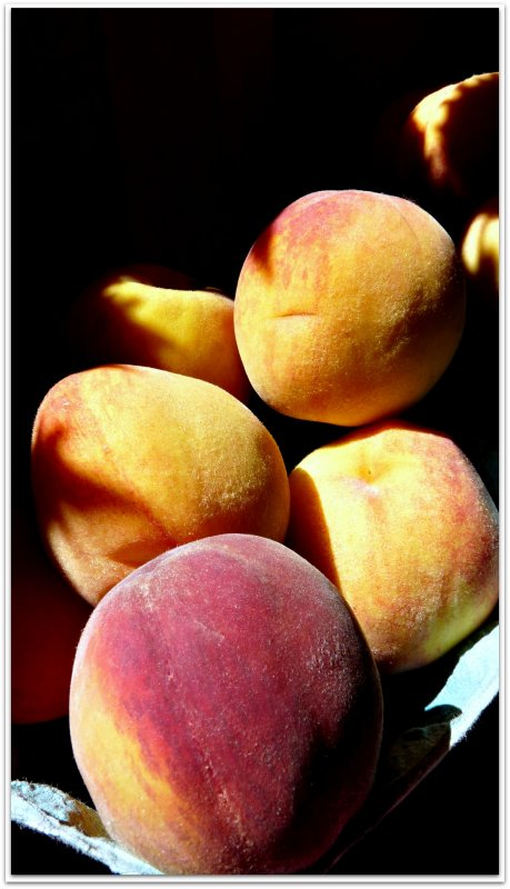 farmstand peaches.