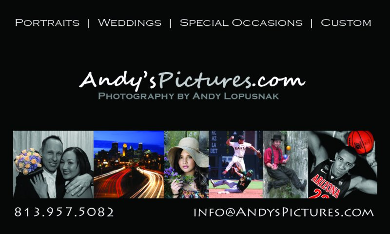 AndysPictures.com business card