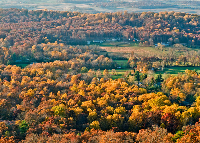 Fall-View-from-Bears-Den