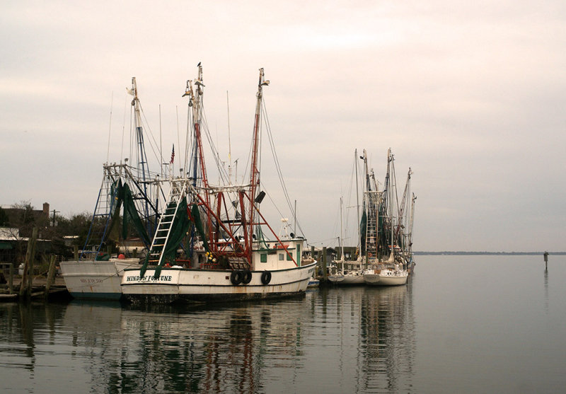 Shem Creek shrimping boats