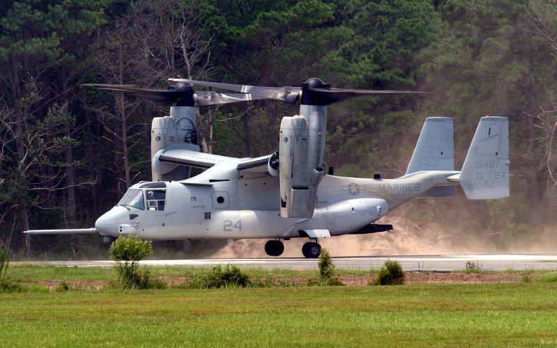 Osprey Landing at Kitty Hawk