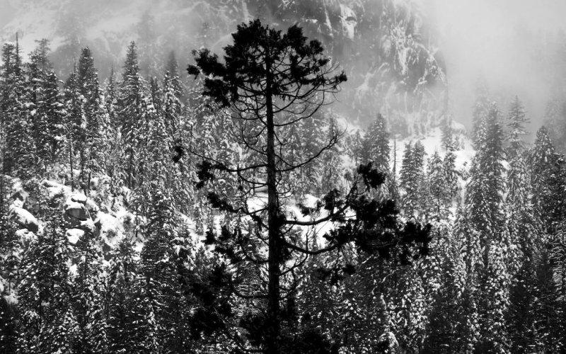 Winter over Yosemite Valley