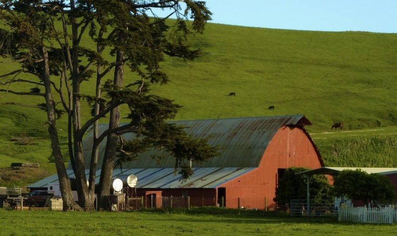 Red Barn in a Green Landscape