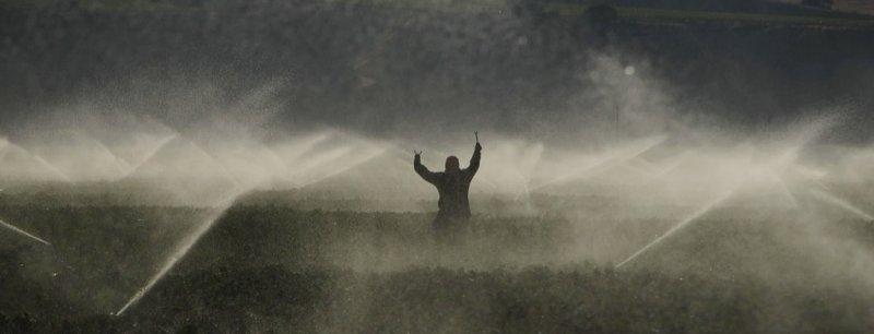 Wet Field Hand