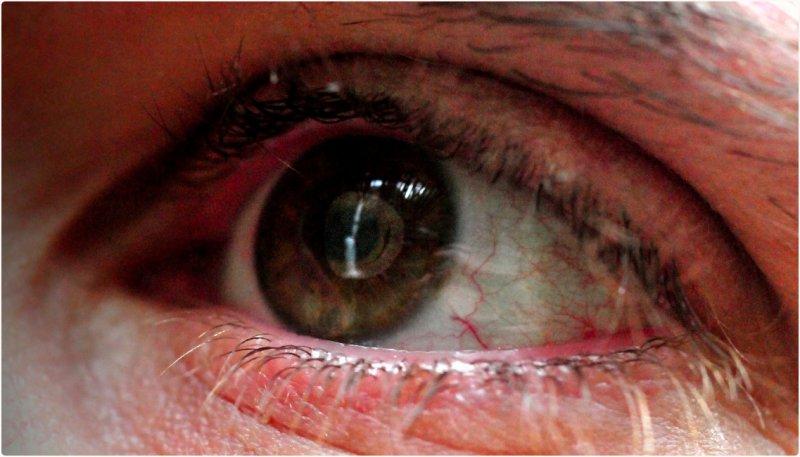 Multnomah Falls in an Eyeball