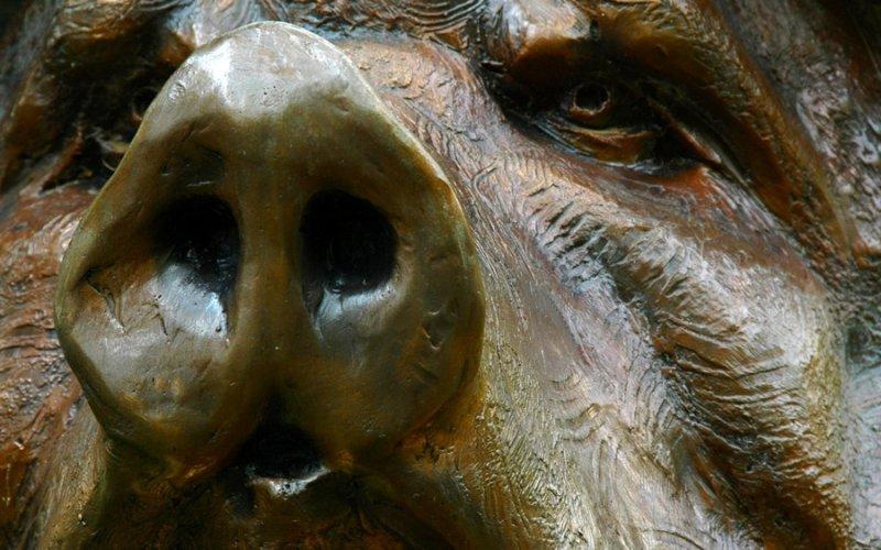 Brookgreen Garden Bronze - Title: Eat More Pork