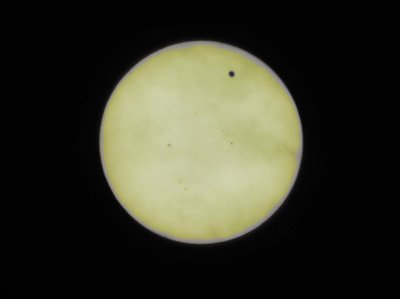 The Transit of Venus (Plus Sunspots!) - from Sunny Portland!