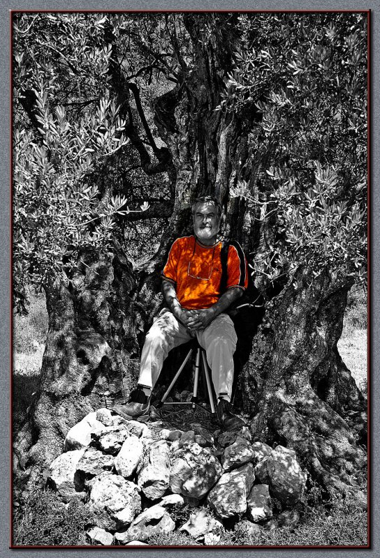 A fellow photographer taking rest inside an olive tree