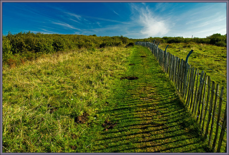 The Good Fence