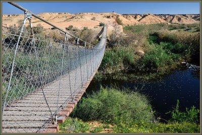 The rope bridge over Nachal Bsor