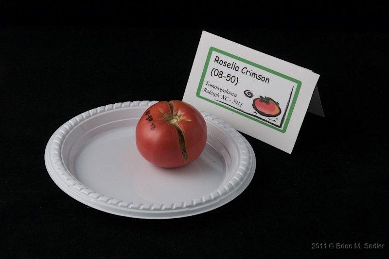Rosella Crimson (08-50)_hf.jpg
