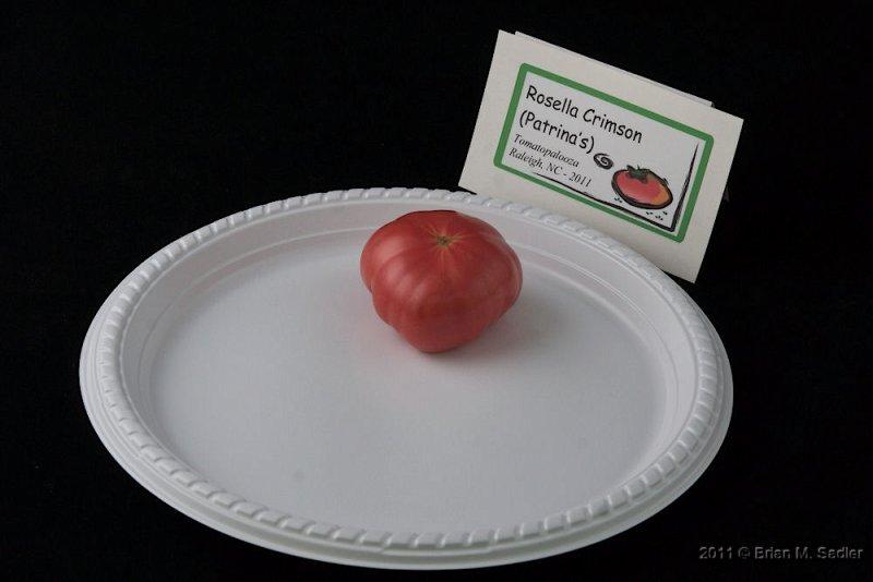 Rosella Crimson (Patrinas)_hf.jpg