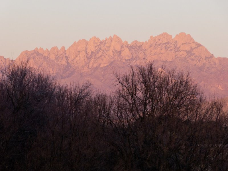 Organ Mountains from arroyo adjacent to park